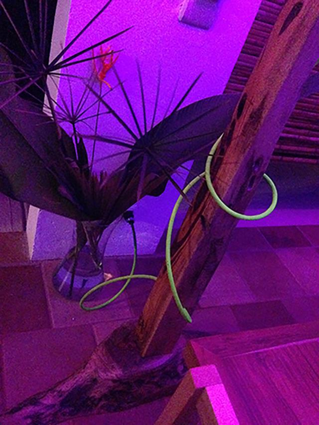 BAMBOO & RONRON FLOOR LAMP DESIGN