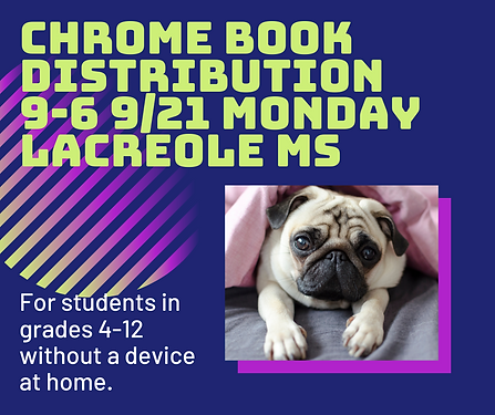 Chrome book Distribution Updated (1).png