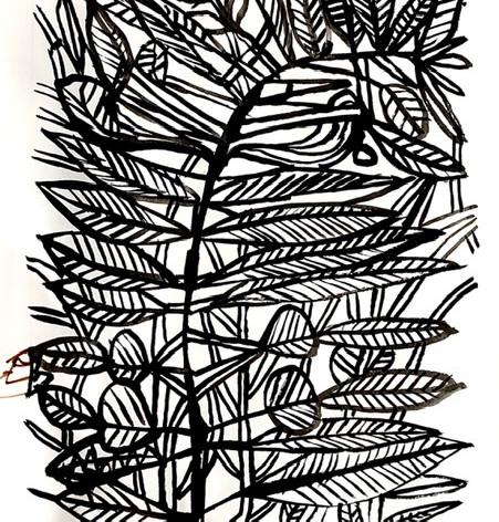 1 April Plant Drawing