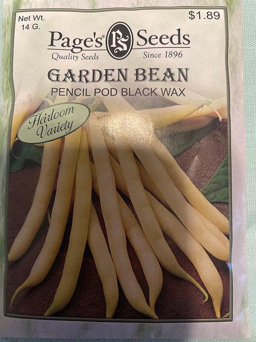 Garden Bean-Pencil Pod Wax Yellow