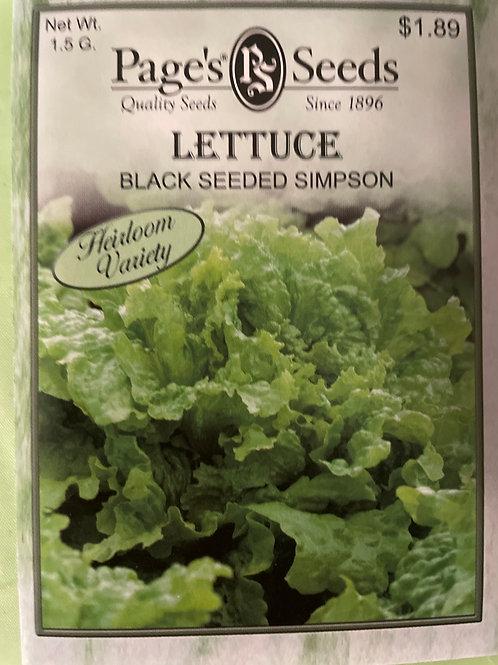 Lettuce-Black Seeded Simpson