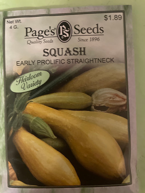 Yellow Squash-Early Straightneck