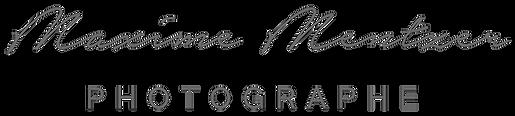 logo caligraphie gis1.png
