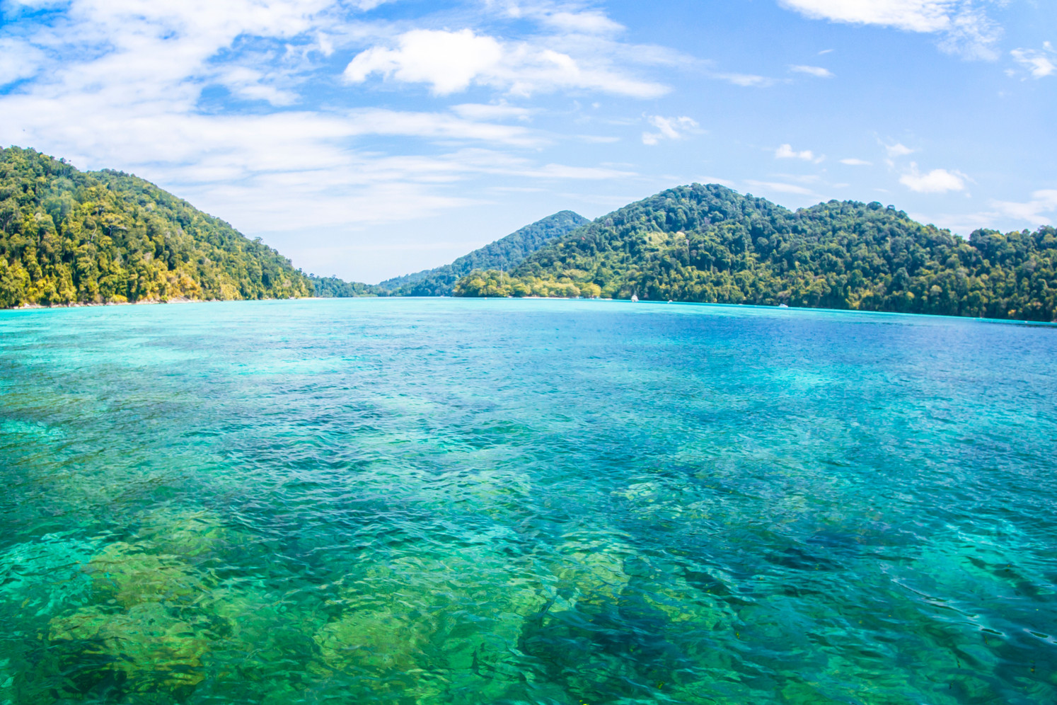 Canva - beautiful seascape at surin isla
