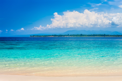 Canva - Beautiful Beach and Tropical Tur