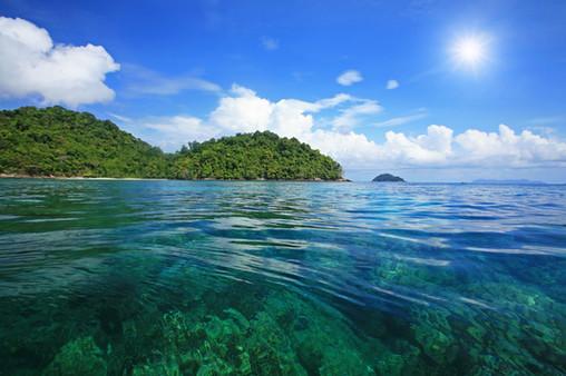 Canva - Snorkel spot at Koh surin.jpg