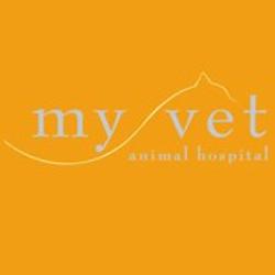 My Vet Animal Hospital