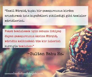 Sultan Bahu Hz.