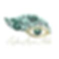 Eye Logo 3.11.18.png