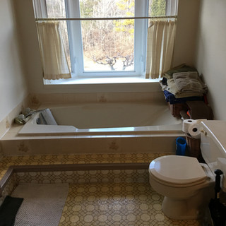 Orleans Project - Before
