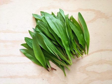 Hello there, Wild Ramps!