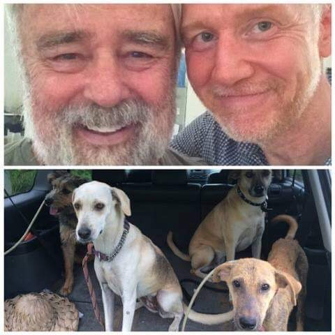 A Dear Retreat Guest & Homeless Dogs