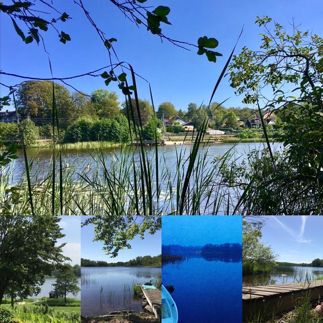 Lakeside at Lilla Skogsstugan
