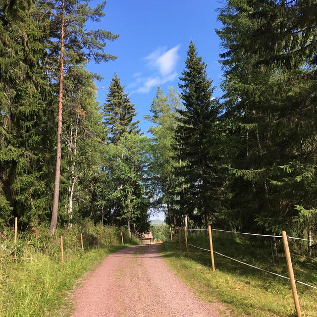 Mountain Work Retreat Sweden