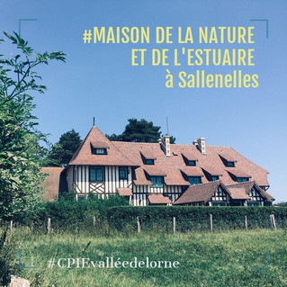 Animations de l'été 2019 à la Maison de la nature et de l'estuaire de Sallenelles