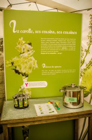 #Expo - Le retour de PLANTAMANIAK au Musée d'initiation à la nature