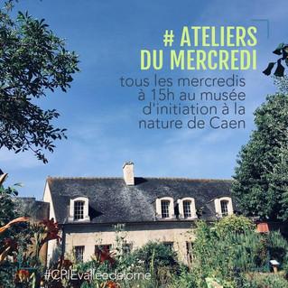 Animations de l'été 2019 au Musée d'initiation à la nature de Caen
