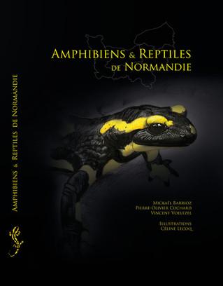 #Sorties du WeekEnd - Une rencontre avec les amphibiens & reptiles de Normandie, ça vous tente ?