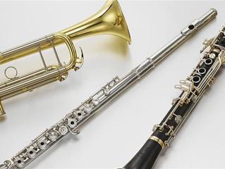 Открыт дополнительный набор на самоокупаемому отделению по классу духовые инструменты: флейта, кларн