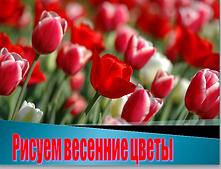 Тюльпаны, нарцисы..PNG
