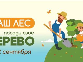 """22 сентября акция """"Наш лес. Посади свое дерево""""."""