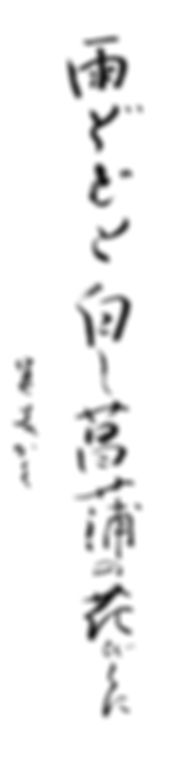 Kコース作品紹介(師範_井上算美)中-2-1.jpg
