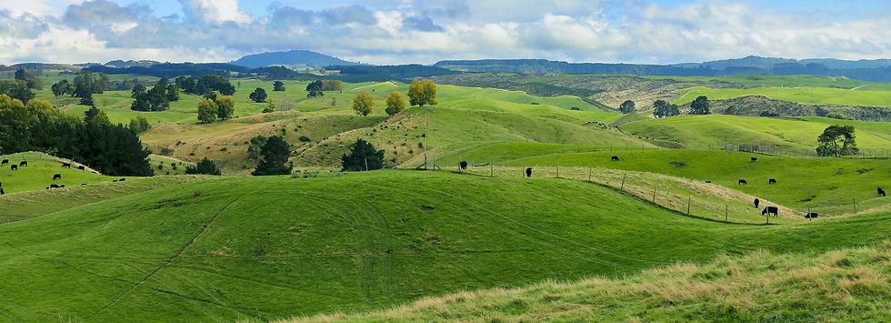 MJ Farm Land Banner.jpg