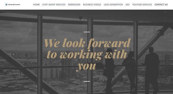 webdesign voorbeeld 1.jpg