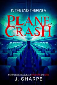 plane 4.jpg