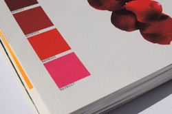 Colour swatch book