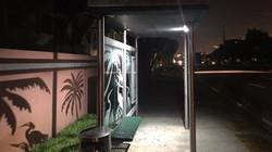 Solar Bus Stop Security Lighting