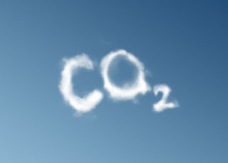 Sipping Carbon from the Air