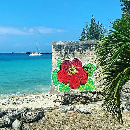 Hibiscus by the Sea