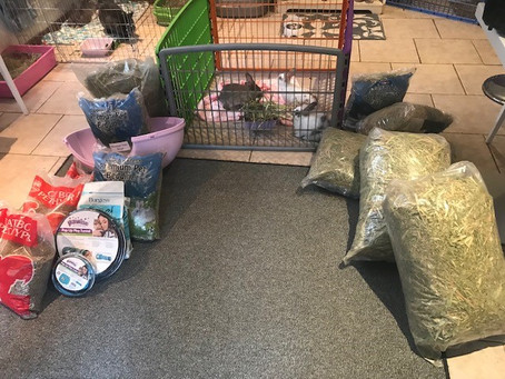 BUNNY TALES RESCUE - FIELD AND STUDY CENTER DONATION