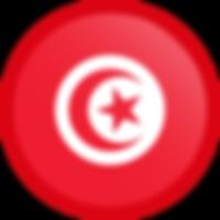 tunisia-flag-button-round.png