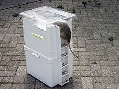 Piège mécanique pour rats, souris, mulot, sur-mulot