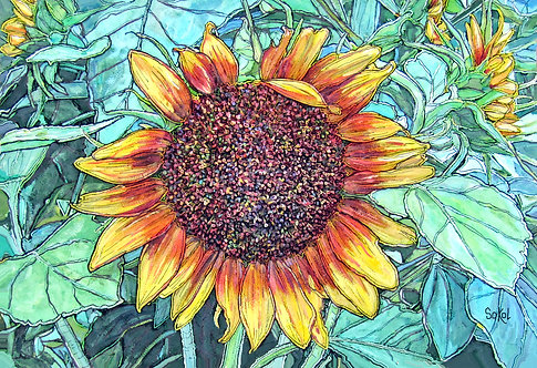 Garden Sunflower - LARGE