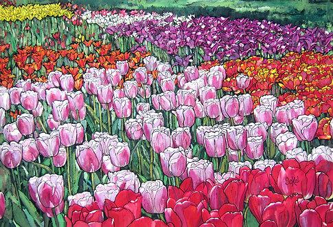 Tulip Garden - LARGE