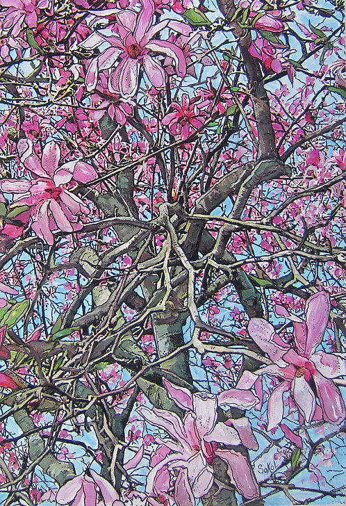Vertical Pink Magnolias - SMALL