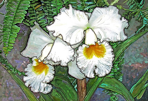 A Pair of White Orchids - SMALL
