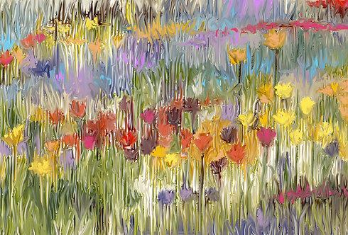 Tulips - LARGE