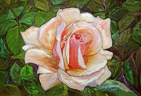 Rose in Full Bloom - SMALL