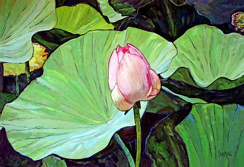 Pink Lotus - SMALL