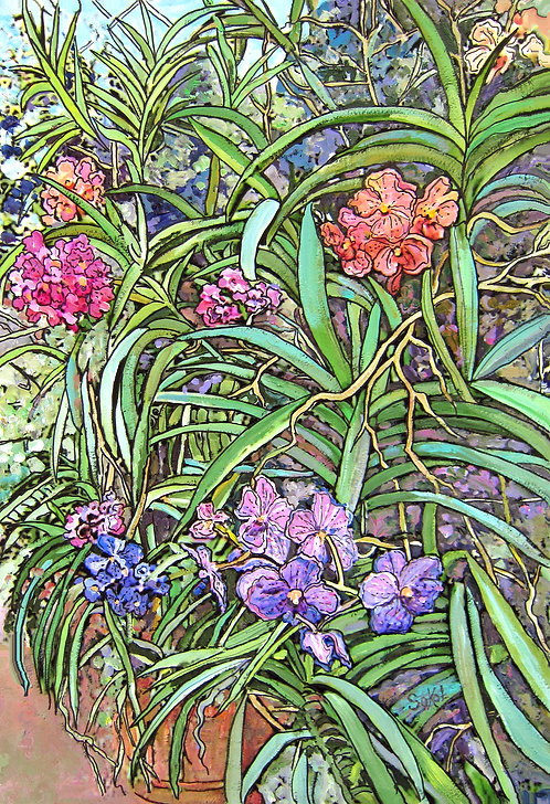 Vertical Variety of Orchids - LARGE