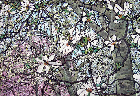 Many Magnolias - LARGE