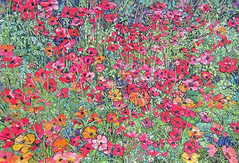 Field of Poppies - LARGE