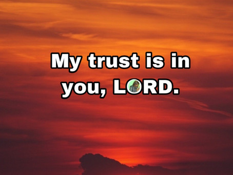TODAY'S PRAYER: I SHALL TESTIFY
