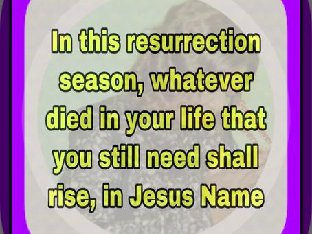 TODAY'S PRAYER: I SHALL WITNESS A RESURRECTION