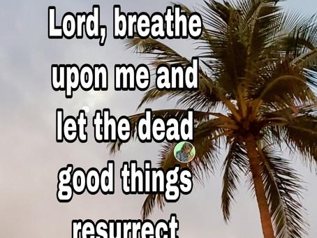 TODAY'S PRAYER: MY SEASON OF RESURRECTION