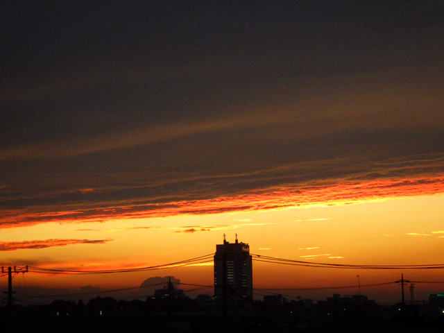 夕焼けに茨城県庁のシルエットがかっこいい!